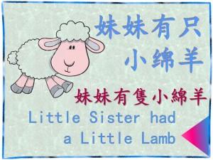 ni hao lamb