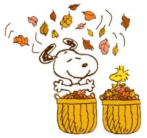 like fall