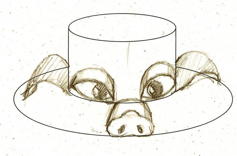28999-pig