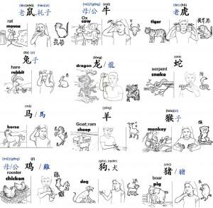 12 zodiac W
