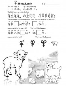 K3 sheep